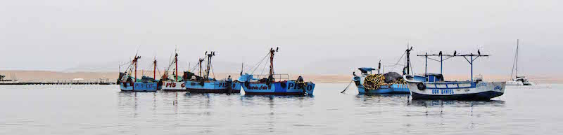 boats in mooring, Paracas