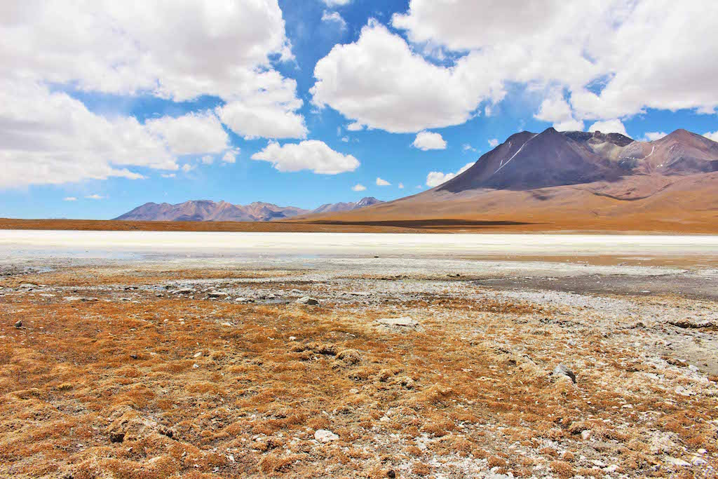 Algea and Salt, The Bolivian Salt Flats, Inca to Inuit