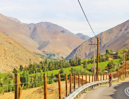 Explore Mendoza By Bike