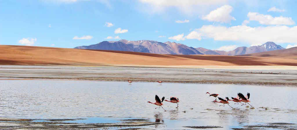 Bolivian Salt Flats, Inca to Inuit