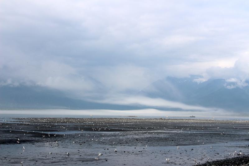 Hathery cloud